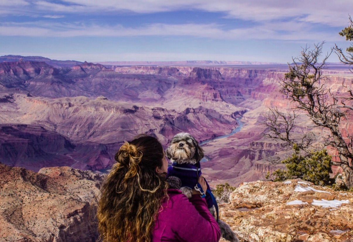 Full-time RVers Life Among Pines enjoying the Grand Canyon with their Dogs