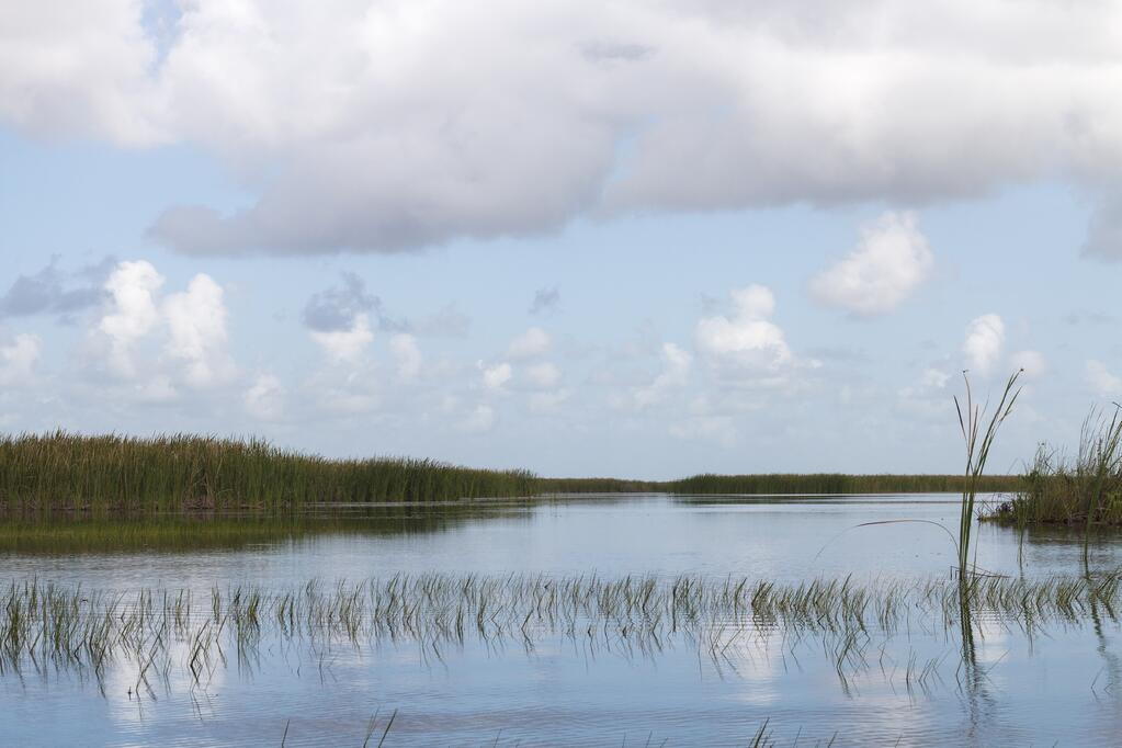 5 Beautiful RV Destinations in Florida for Nature Lovers