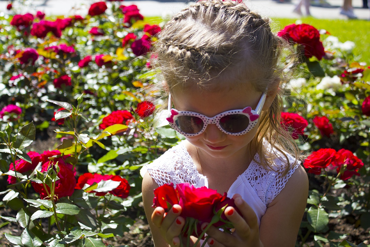 Visit Hershey Gardens in Hershey, Pennsylvania to explore dozes of varieties of flowers.
