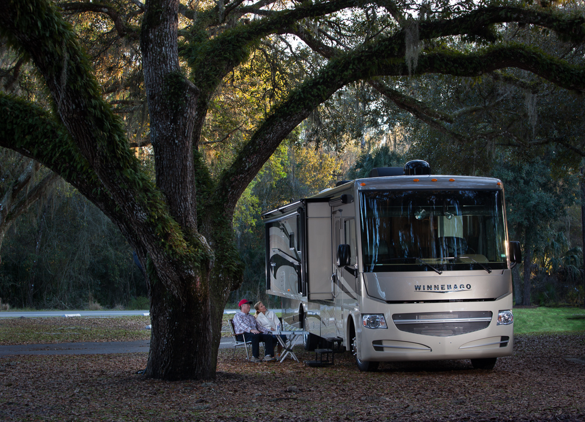 winnebago motorhome camping under a tree